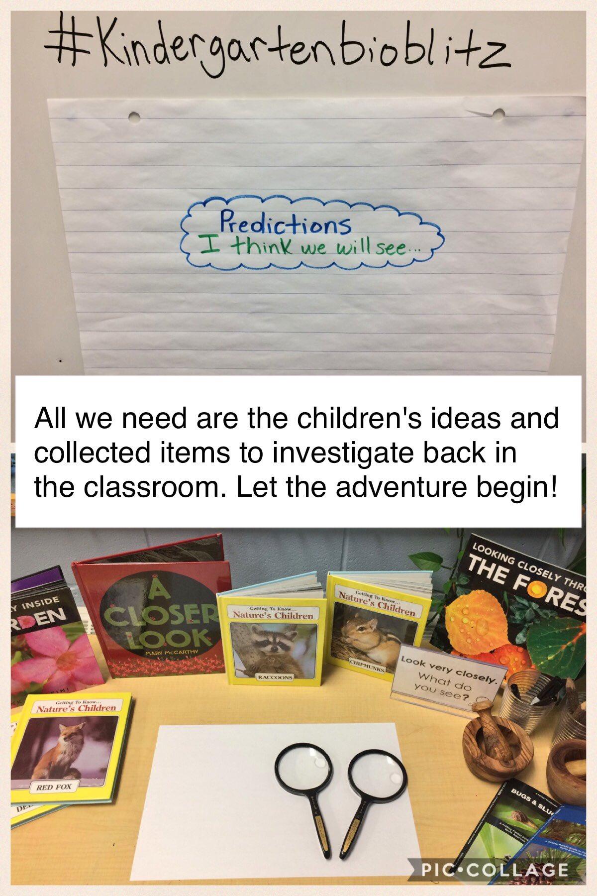 Thumbnail for #KindergartenBioBlitz Seasons Changing Edition Feb 27-Mar 3, 2017