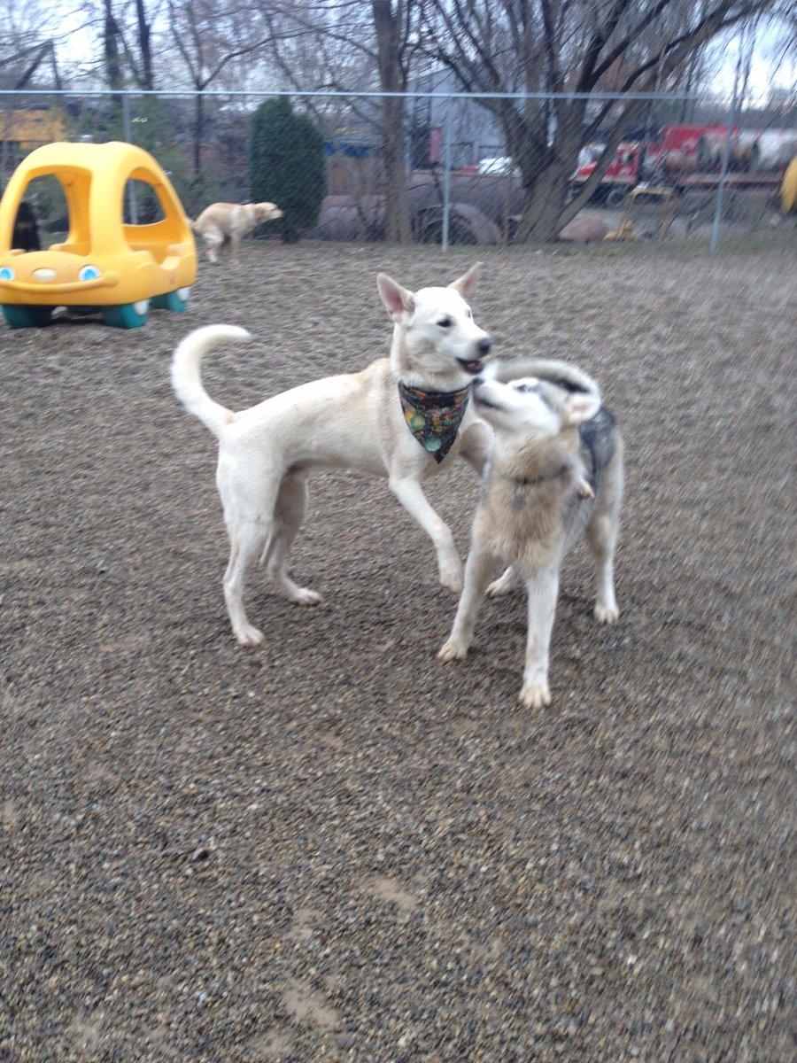 Leif gives Rocko a hug