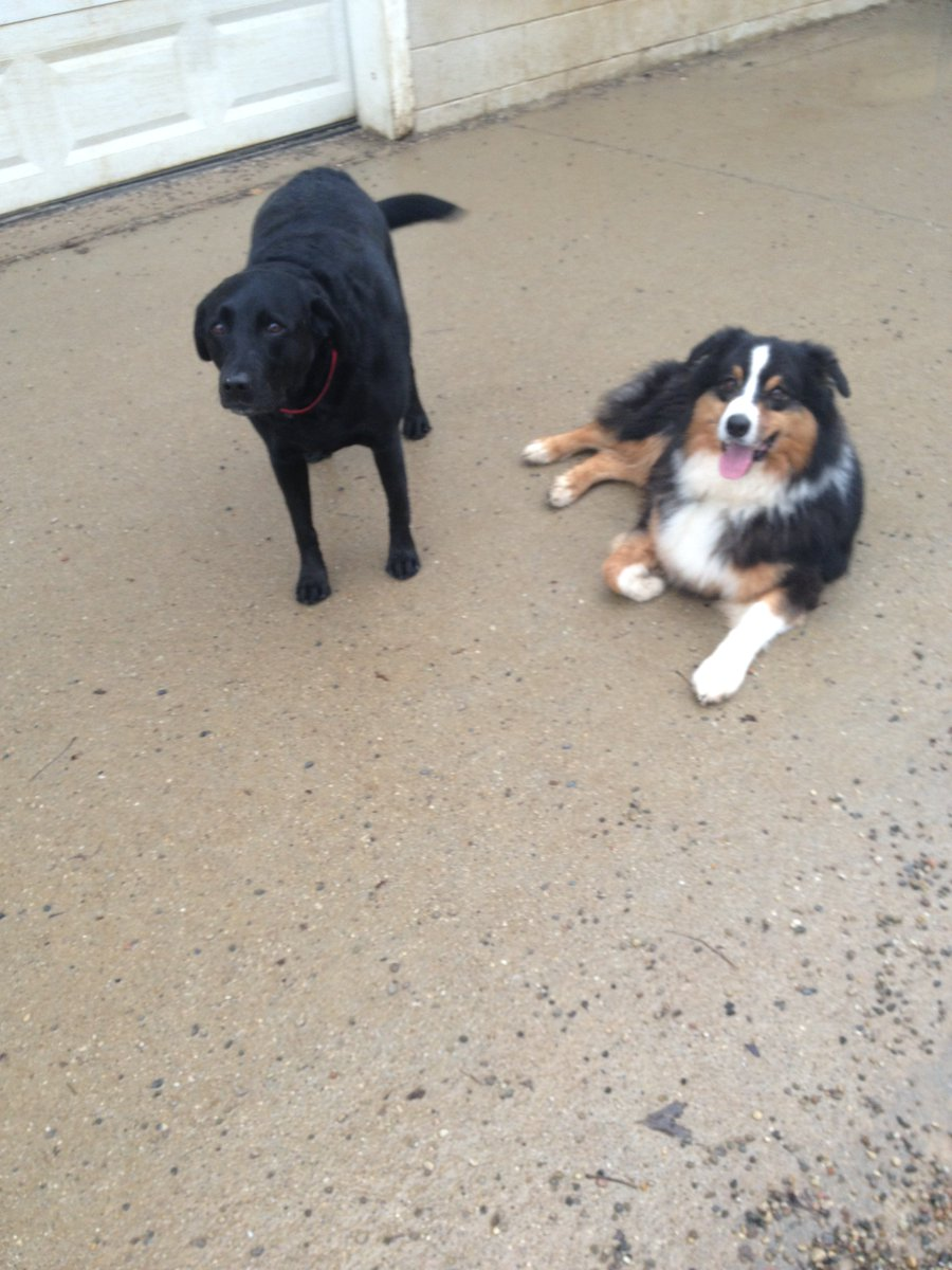 Triumph and Maizy pose for a picture together