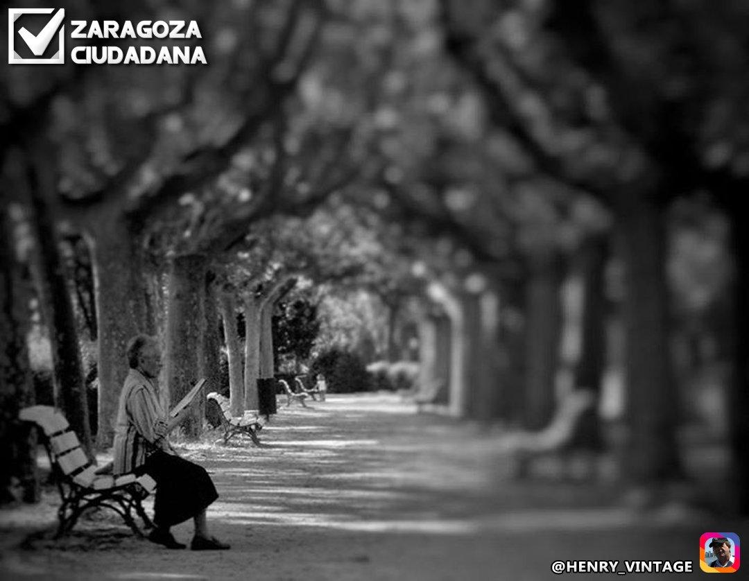 Hay algo que da esplendor a cuanto existe, y es la #ilusión de encontrar algo a la vuelta de la esquina... ¡#Buenosdías, #Zaragoza! <br>http://pic.twitter.com/ervIHALbba