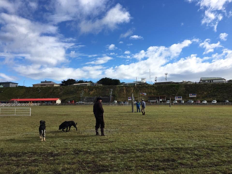 Ya se vive una nueva versión de la Fiesta Campesina del Ovejero en Cerro Sombrero  región de #Magallanes Fotos: Muni De Primavera <br>http://pic.twitter.com/NGxniFEykP