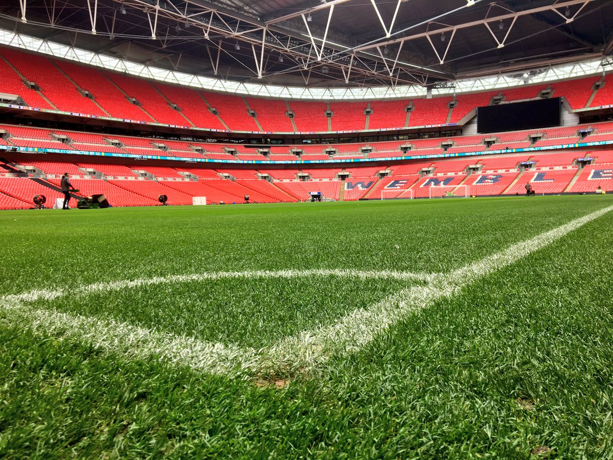 Perfection. 😍  #EFLCupFinal https://t.co/30hAFuw0OO