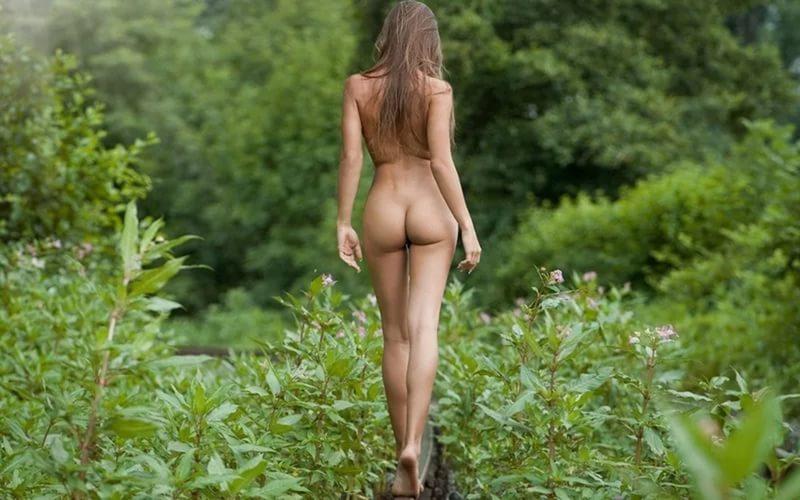 Nature Of Women Melonstube 1