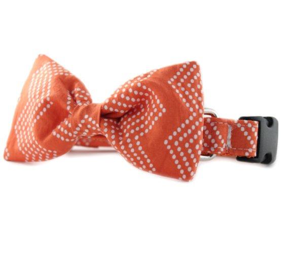 Orange Bow Tie Dog Collar - Orange Splash Chevron Bow Tie Dog Collar - Orange White Chevron Tiny..  https://www. etsy.com/listing/228794 727/orange-bow-tie-dog-collar-orange-splash?utm_source=around.io&amp;utm_medium=twitter&amp;utm_campaign=around.io &nbsp; …  #chicago #dogs<br>http://pic.twitter.com/5hDL4xTykf