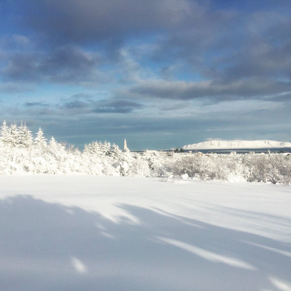 Reykjavík was hit with the biggest snowfall in ages and it's a beautiful day so go out and enjoy it! #winterwonderland <br>http://pic.twitter.com/R1dhHFN4KH