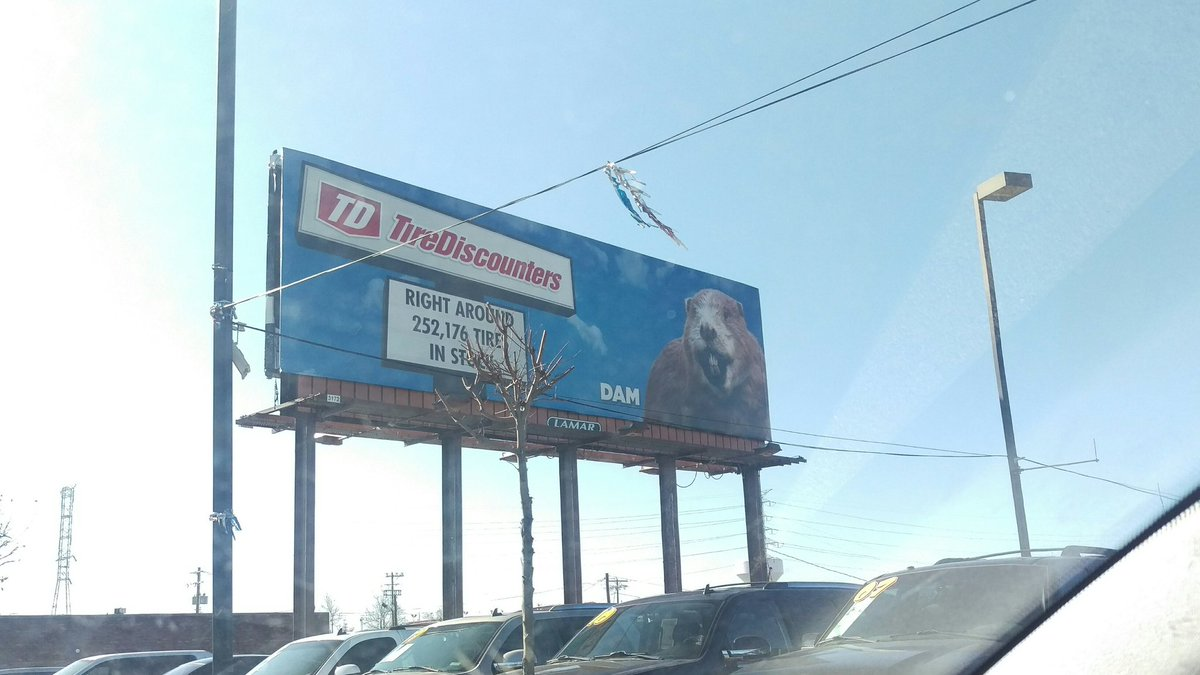 Tire Discounters Near Me >> Tire Discounters On Twitter Llama Make You A Billboard