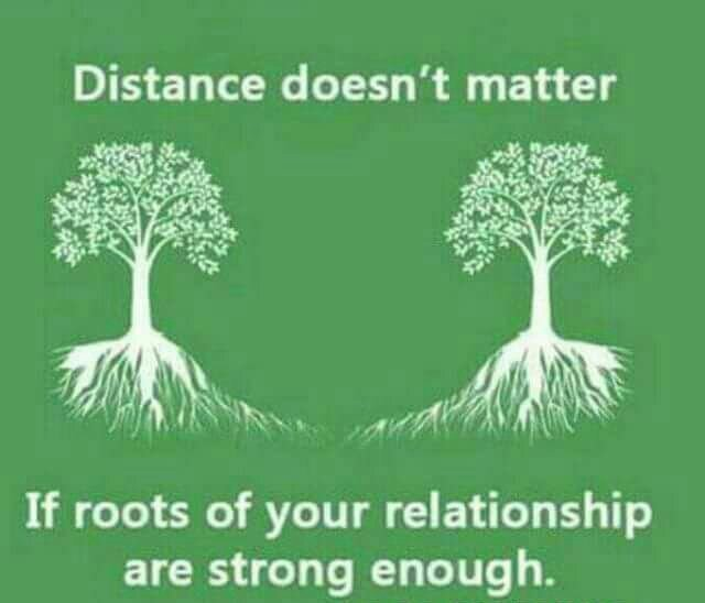Inspirational Quotes On Twitter Distance Doesnt Matter If Roots