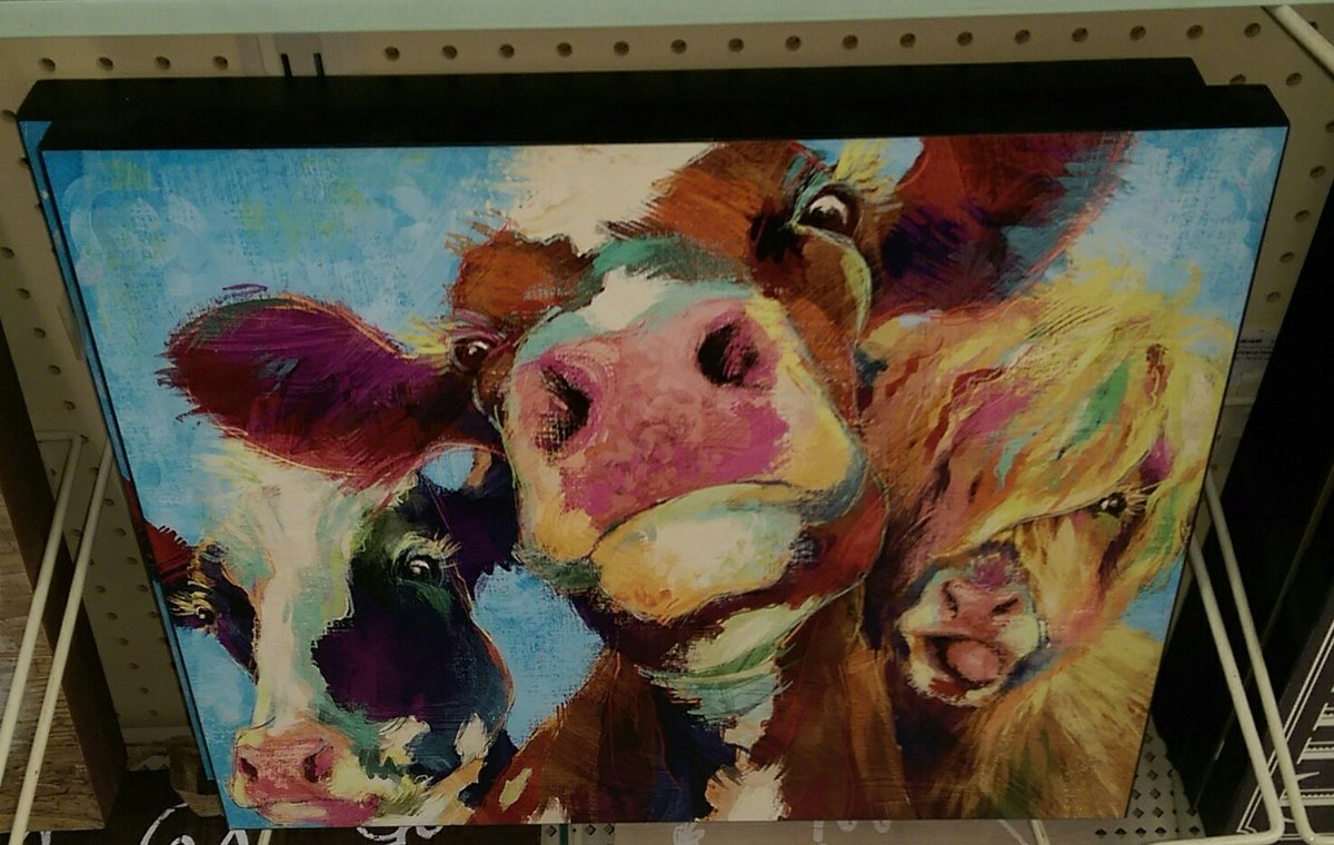 Saw this out shopping and made me think of @SeviduBlaca @MarhawaMoo and all my other Mooish friends here! #Moo <br>http://pic.twitter.com/MTbeSR5WzJ