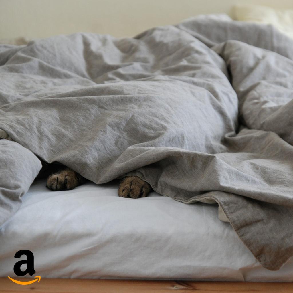 Ugh... Montag! Wie bekommt ihr euch morgens wach? https://t.co/Wiuq7NPT7m https://t.co/2j9yJCjxys