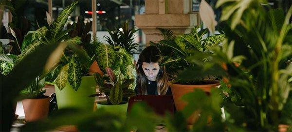 Travailler en pleine nature dans un immeuble au coeur de #Lisbonne! @SECONDHOME_IO @RegionsJob  #coworking #green  http:// bit.ly/2lfOBe8  &nbsp;  <br>http://pic.twitter.com/wsPEQ12J0C