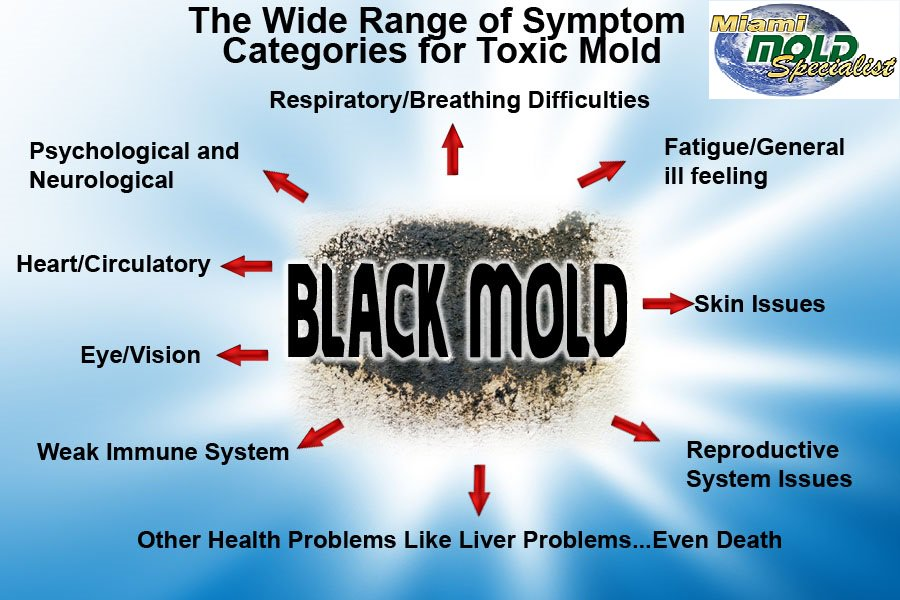 delightful black mold health symptoms Part - 14: delightful black mold health symptoms home design ideas