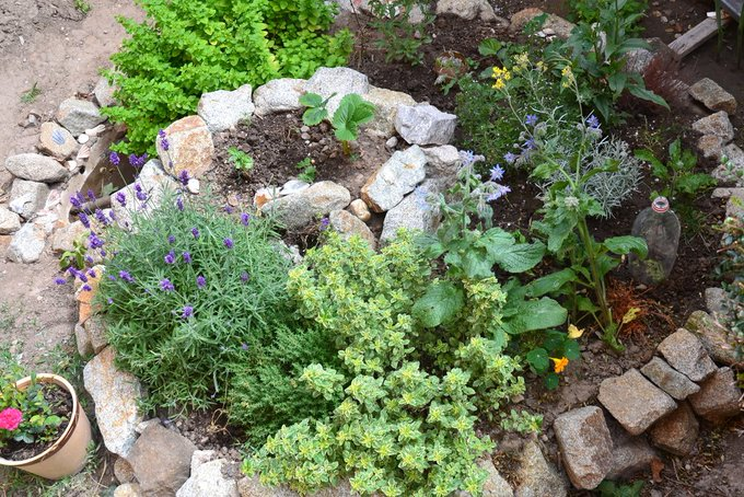 How to Plant Efficiently With Permaculture Principles