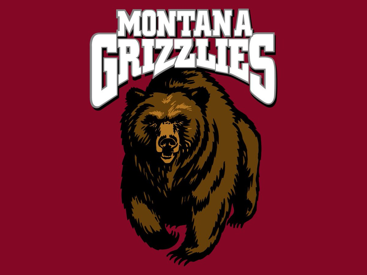 Image result for montana basketball logo
