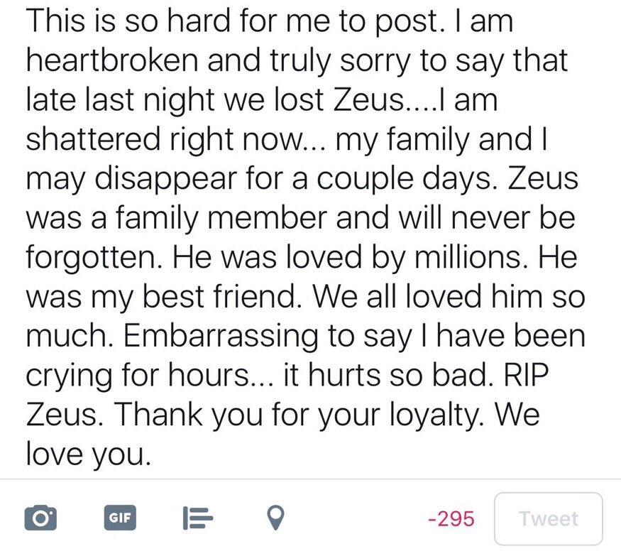 Rest In Peace Zeus 2010-2017 #GermanShepherd #Dog #RIP #RestInPeace #Sad #Moment #LifeMoment #Zeus #ZeusAtwood #RomanAtwood #BestBuddy<br>http://pic.twitter.com/JDkEeGceia