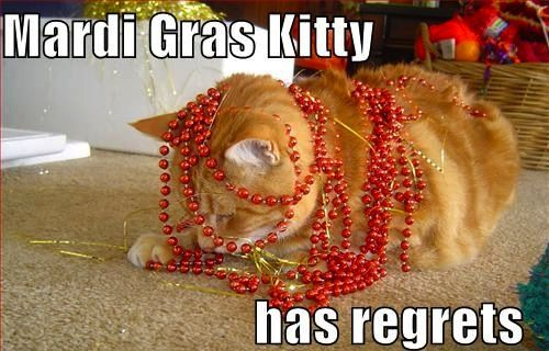 Live life without regret! haha, happy #FatTuesday! #MardiGras #meow ht...