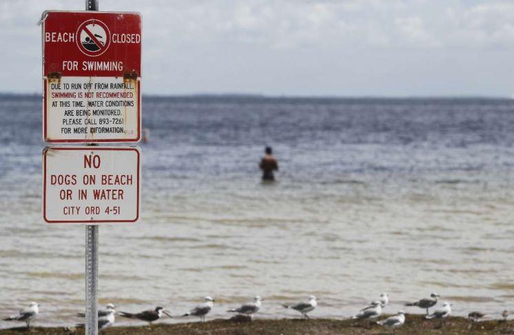 St. Petersburg residents seek reassurance this summer won't be a sewage repeat