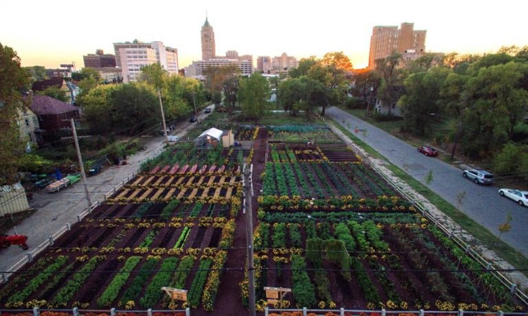 This Area In #Detroit Is Now America's 1st 100% Organic, Self-Sustainable Neighborhood https://t.co/OZVtmGM6wS https://t.co/zMEuI4g7fp
