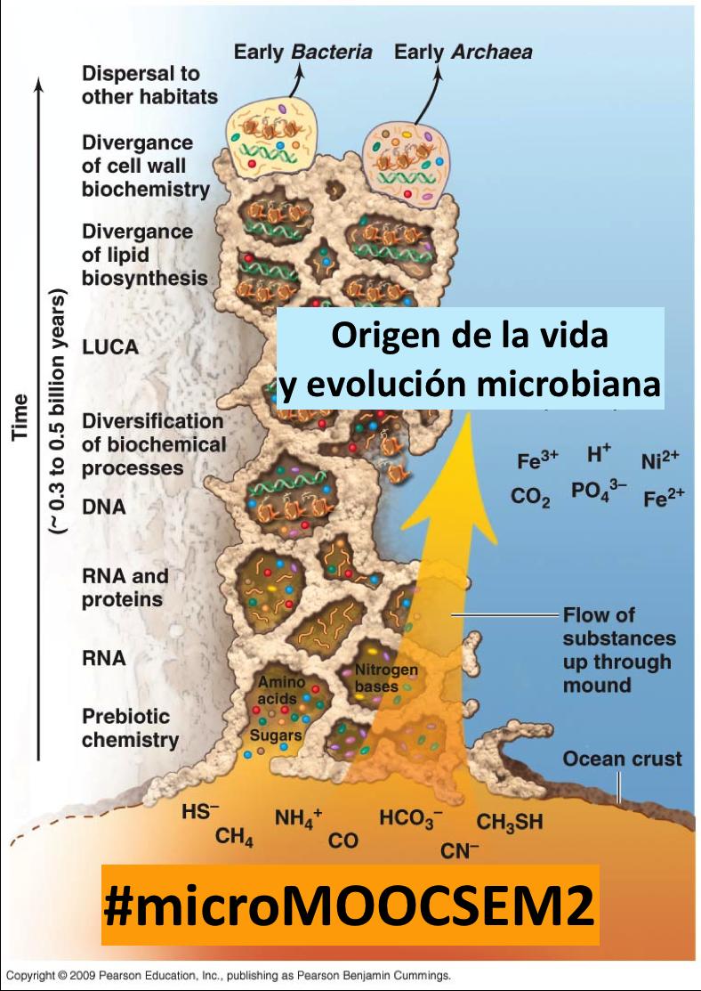 Thumbnail for 2.6. Origen de la vida y evolución microbiana