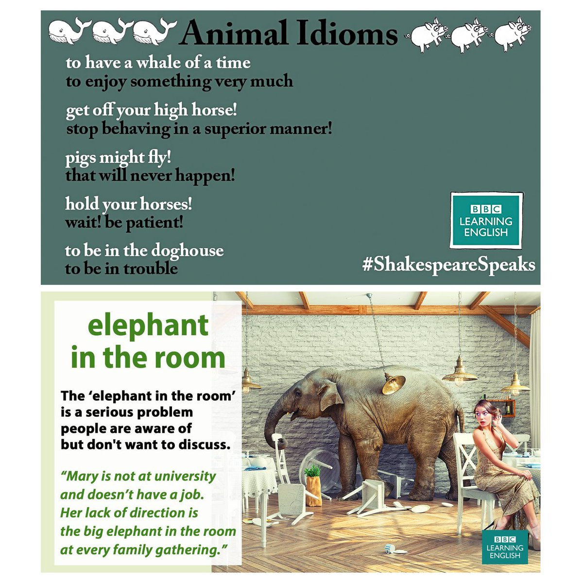 Here are some cool animal #idioms   via @bbcle<br>http://pic.twitter.com/x6n8zpt1Ew