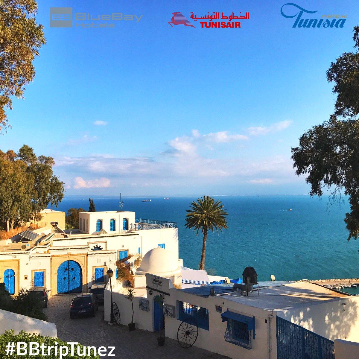 Día de contrastes del cielo azul y casas blancas. Mágico #sidibousaid #BBtripTunez #mediterraneo en estado puro https://t.co/RkcDCWKexq