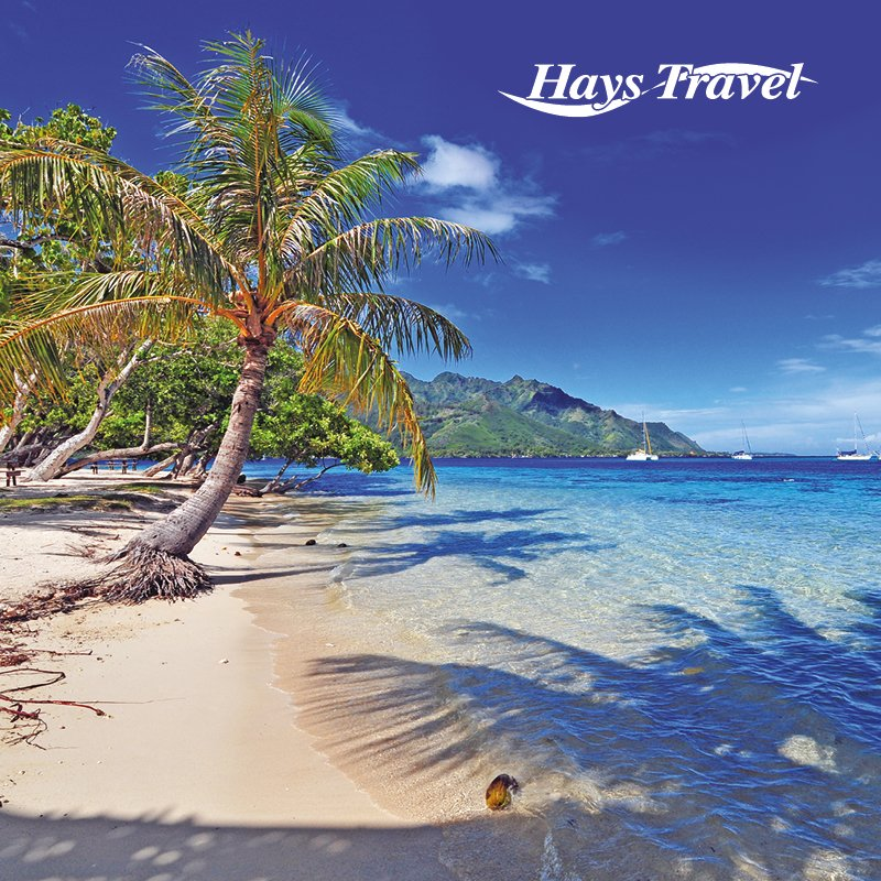 hays travel - photo #29
