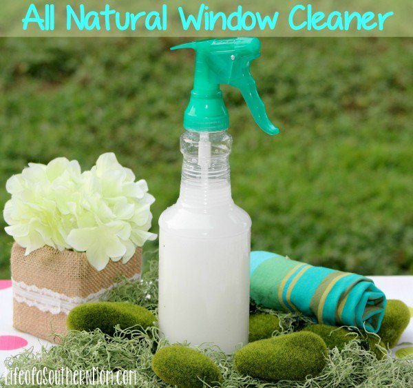 DIY: All Natural Window Cleaner — Life of a Southern Mom