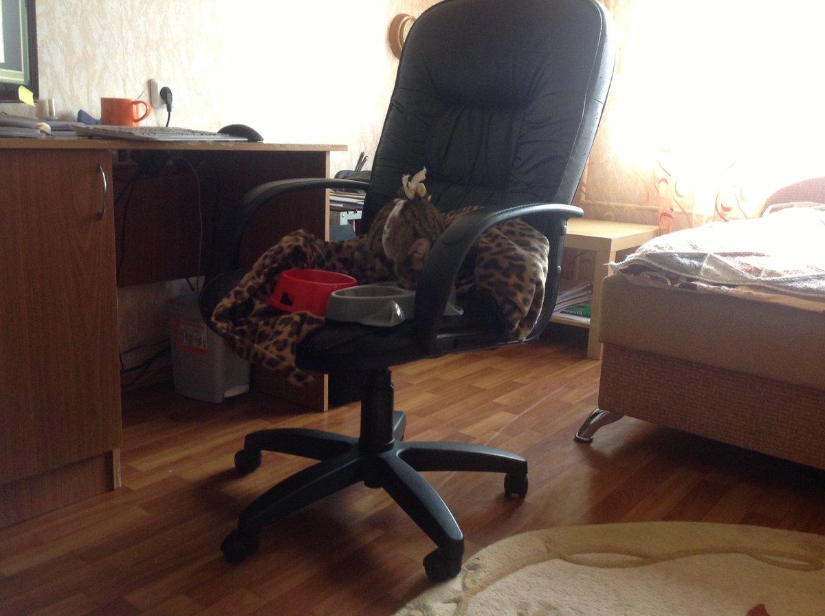 Брат лег под стул и начал дрочить