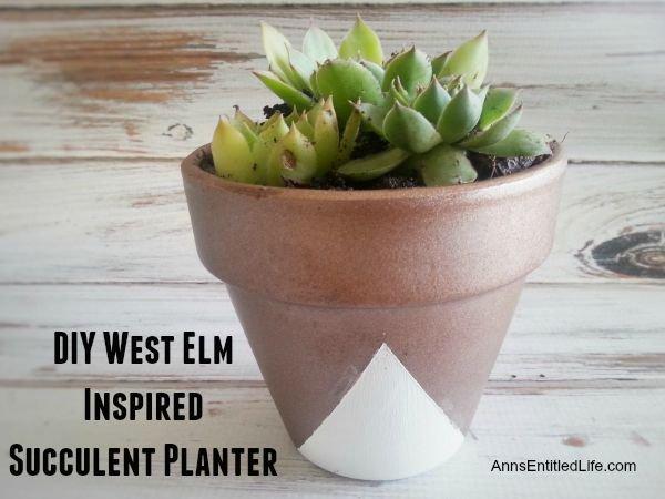 DIY West Elm Inspired Succulent Planter