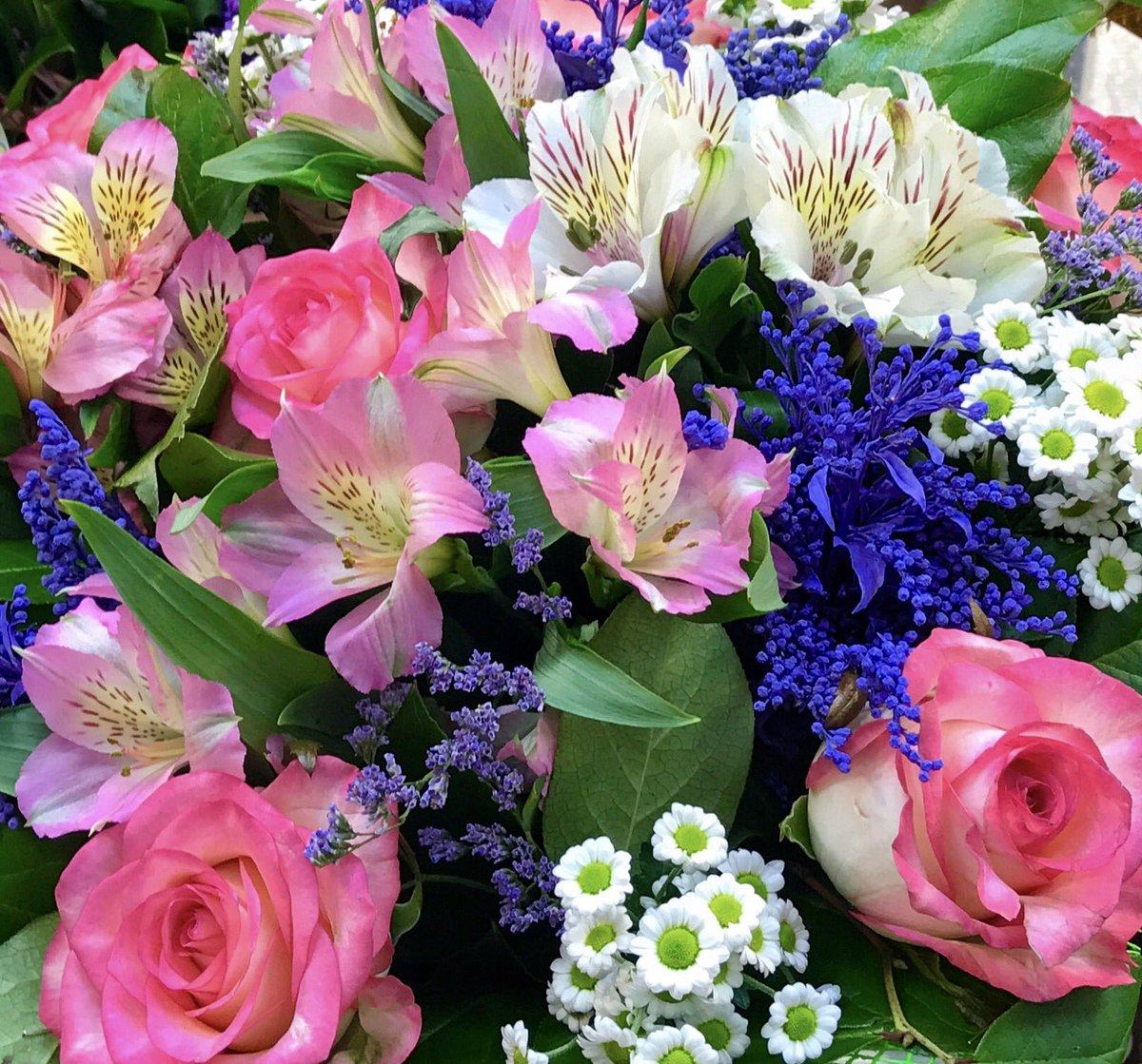 цветы для зои картинки самый