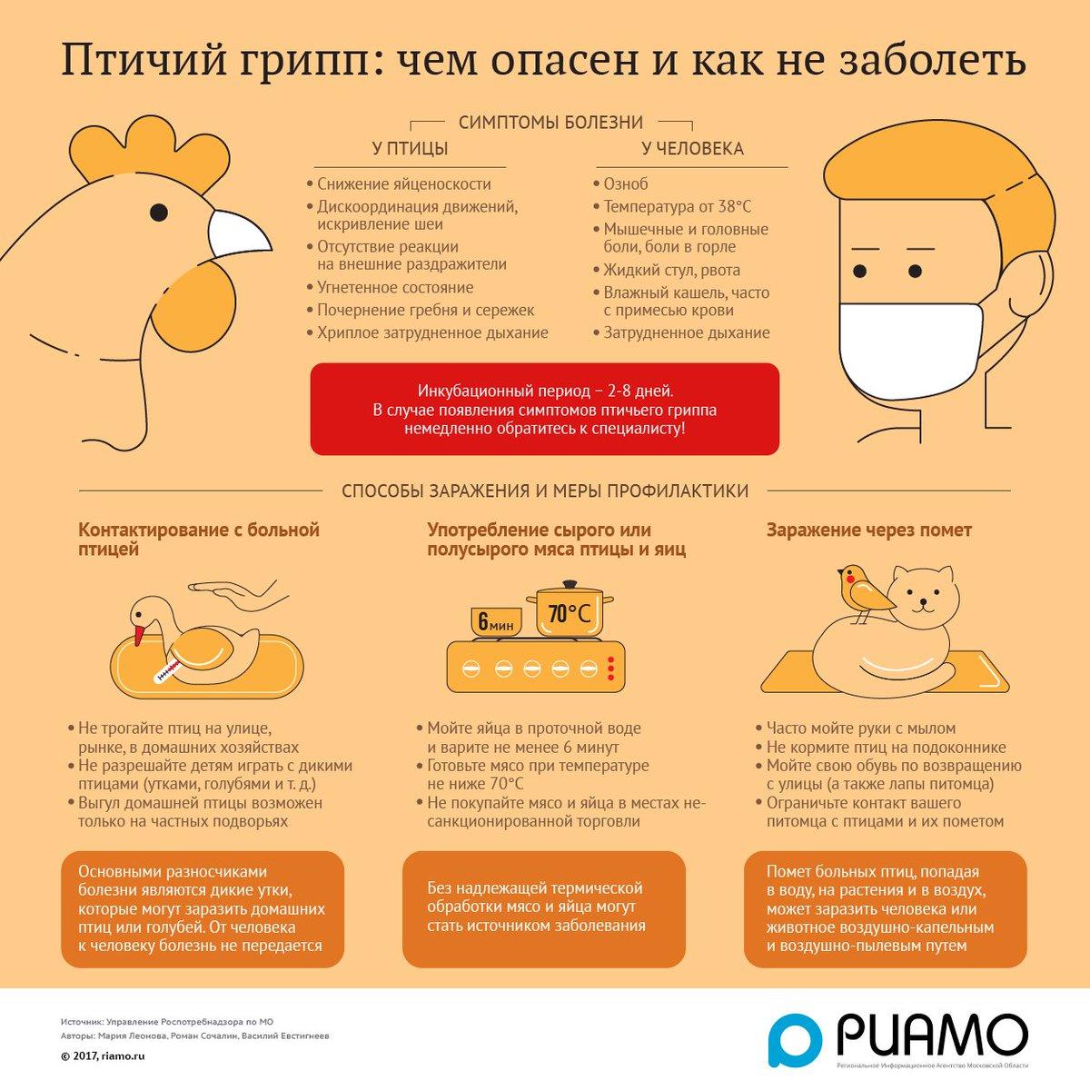 Профилактика гриппа и орви для детей памятка