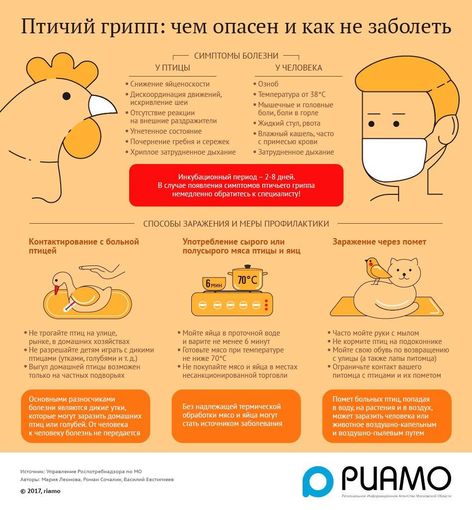 Профилактика гриппа и простуды препараты