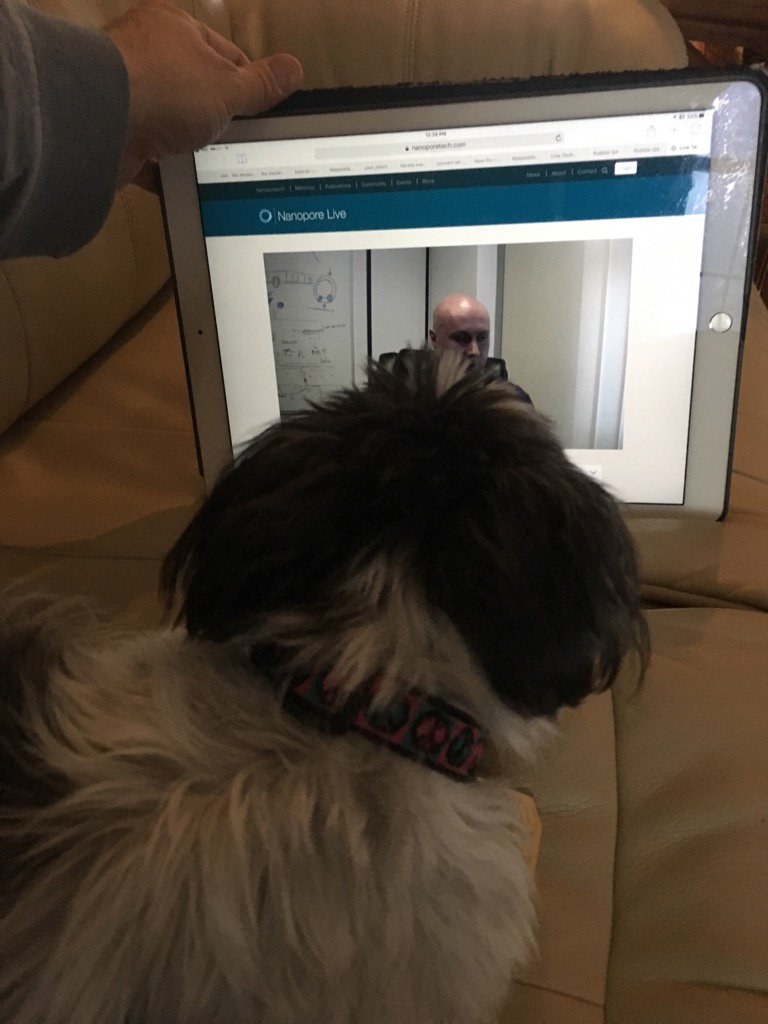 Blog team member intently watching @Clive_G_Brown webcast - now must confer & write-up impressions https://t.co/jPGpw1w0lg
