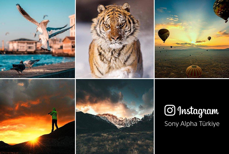 test Twitter Media - Fotoğrafçılığa meraklı mısınız? Sony Alpha Türkiye'yi Instagram'dan takip edin! https://t.co/BTkBFD1cCX https://t.co/WhnROv1Zol