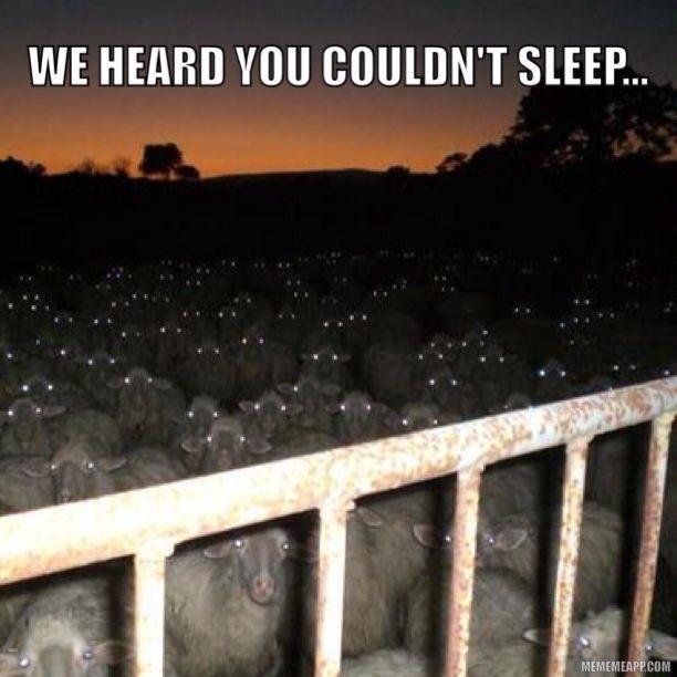 We heard You couldn&#39;t sleep ... #bêêê #moutons #insomnie<br>http://pic.twitter.com/tzpvaTYe9Q