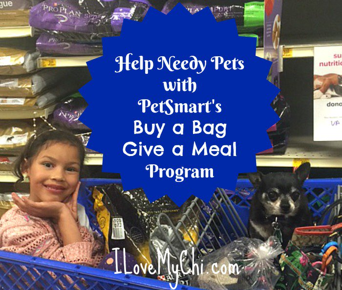 Something really cool PetSmart is doing! https://t.co/IFXzpUZSu8 #fortheloveofpets #ad @PetSmart https://t.co/WeOUcP0gKx