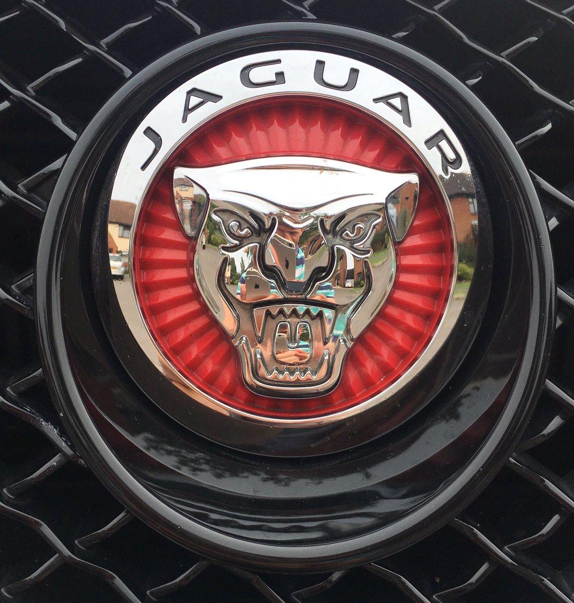 Db Wedding Cars On Twitter Growler Https T Co Wc8wkeytsj Secret Thewhitewed Jaguar Wiltshire Royalwoottonbett Swindon