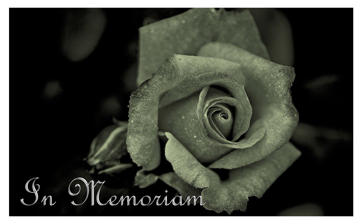 Bni Leaders Thornton Hough Wirral Tuesday Ams Tweet Funeral