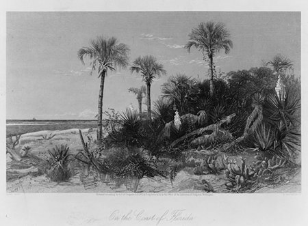 Learn all about the state of #Florida with #primarysources https://t.co/gzgNnAvJSf #tlchat #sschat #engchat #elemchat #edchat #geography #FL https://t.co/U88C4Sk96p
