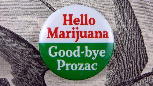 Study: Canadian Patients Substituting Marijuana for Prescription Drugs