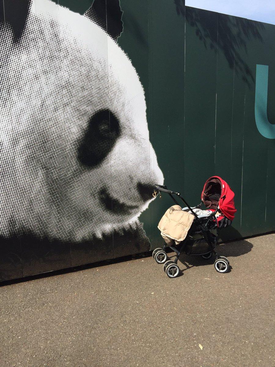 パンダの守護のもとに。