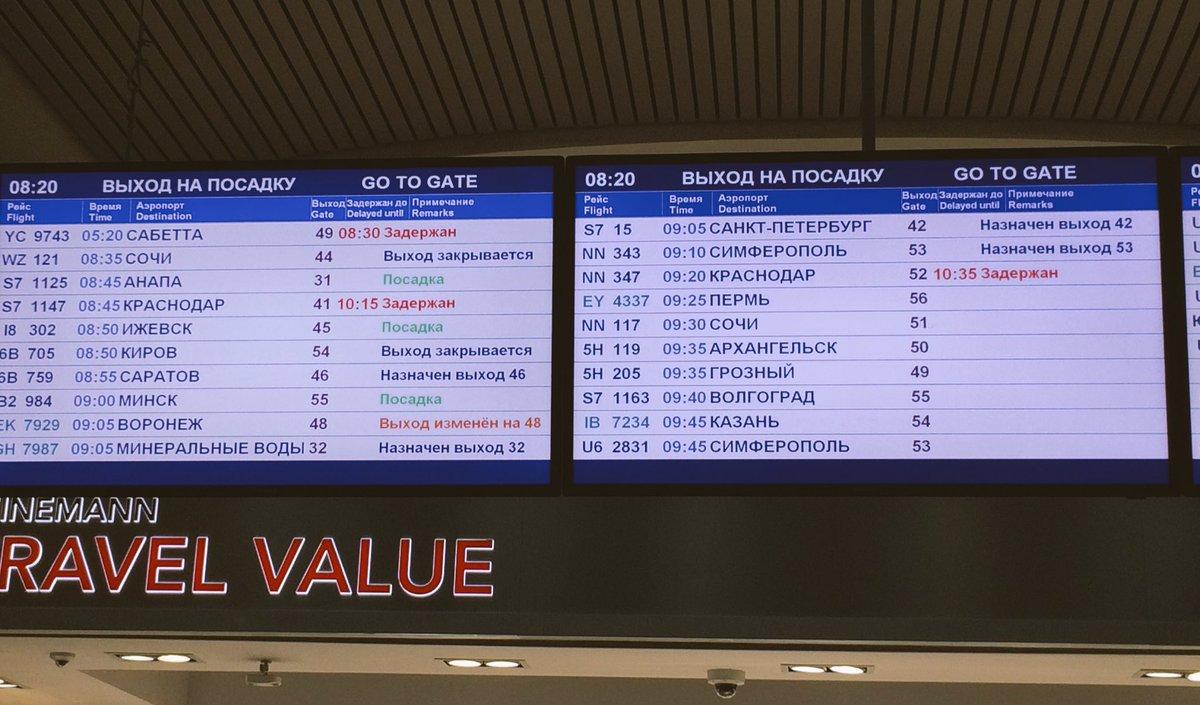 для чего волгорад аэропорт расписание рейсов шерсть мериносовых