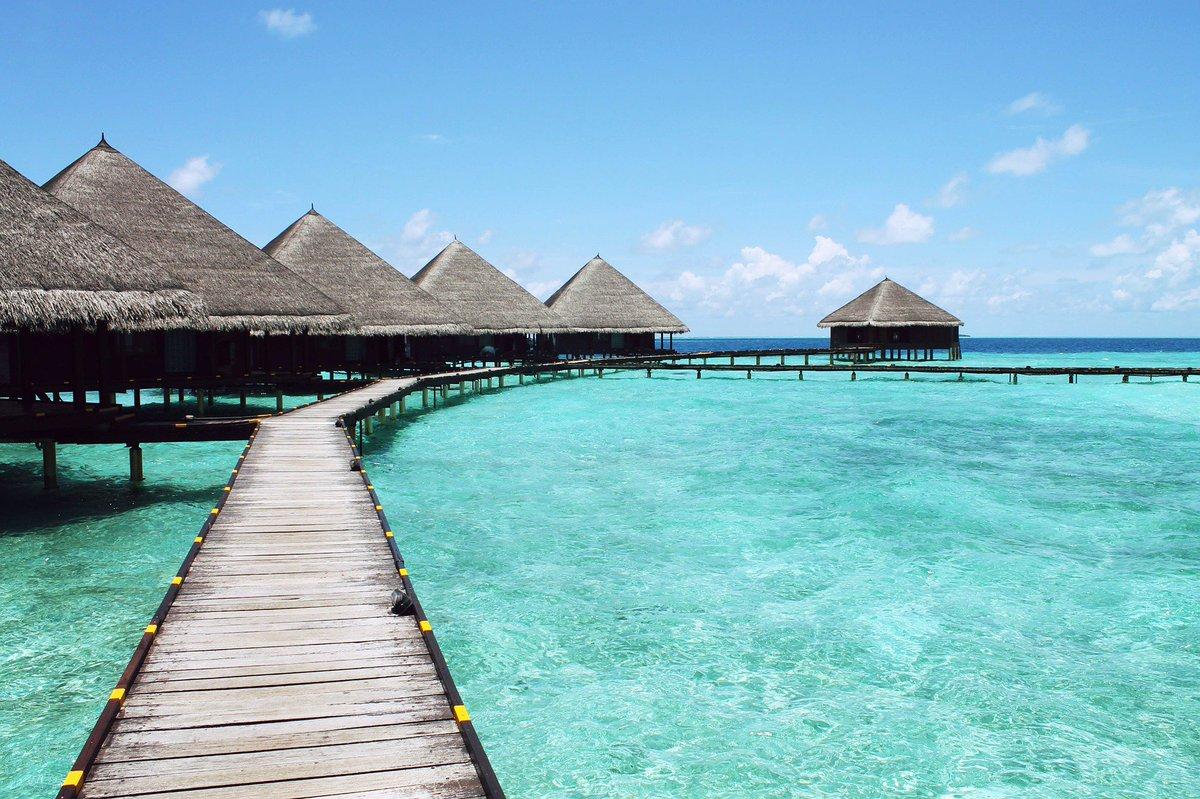 Voyager seul, c&#39;est bien ? Voyager ensemble, c&#39;est pas mieux ? Rendez-vous ici @cogofly pour le savoir #Voyage #voyage #destination #seuls <br>http://pic.twitter.com/bVZrUFV7lg