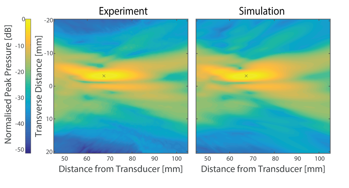 New Paper: Sensitivity of simulated transcranial ultrasound fields to acoustic medium property maps https://t.co/h2qasOmj3H