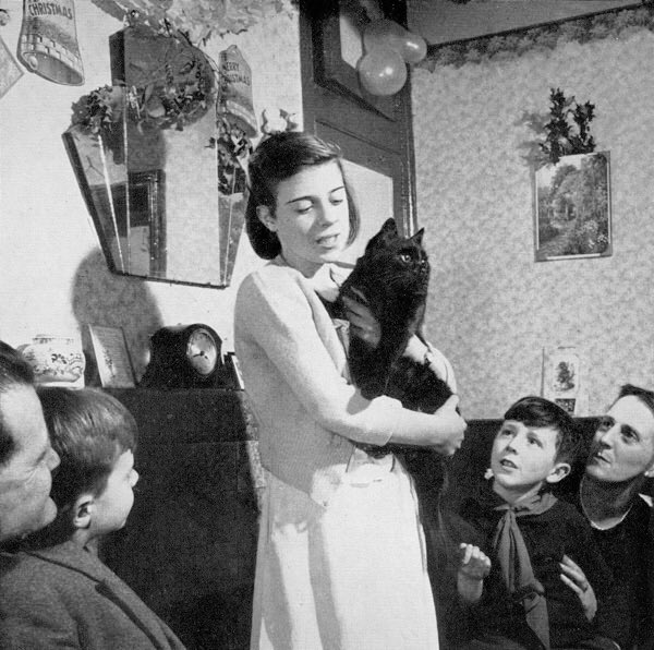 Wonderful pictures from the past of Cockney Cats! Spitalfields Life by @thegentleauthor https://t.co/4C2NjiyriM https://t.co/aRvXKPKv3V