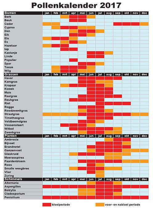 pollenkalender 2019