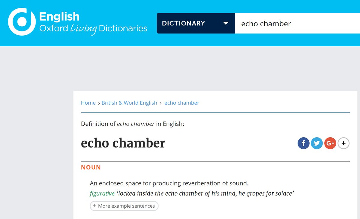 Riley J Dennis On Twitter I Only Believe In The Dictionary Definition Of Words Okay So An Echo Chamber Has No Meaning Outside A Room That
