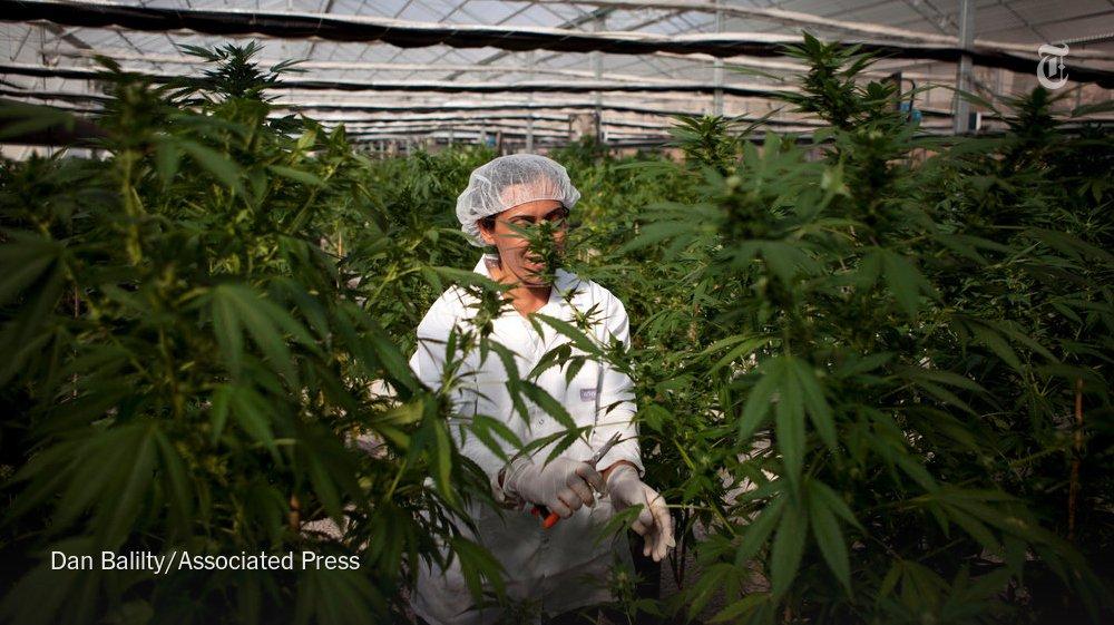Israeli Cabinet Makes Move to Decriminalize Recreational Marijuana Use