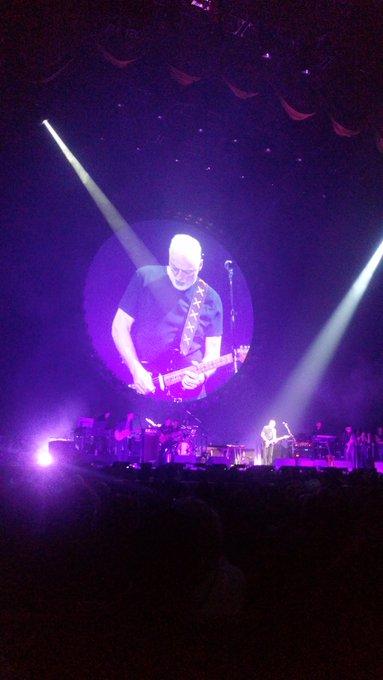 Happy birthday, David Gilmour. Much love. XO
