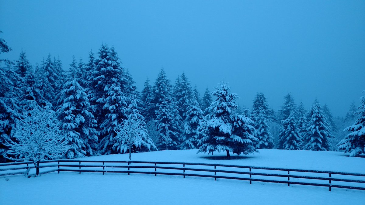 5&quot; of snow on 3/6? Our house in North Plains this AM. #pdxsnow, #nwwinter<br>http://pic.twitter.com/LPbK1PWbjr