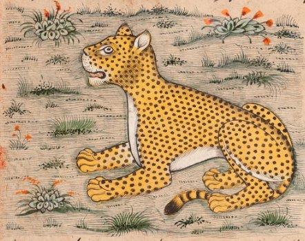 Tratado sobre história natural, copiado séc XVII, c/ figuras de animais, plantas e pessoas: https://t.co/qeOKKFq70o https://t.co/B7MgTBus1f